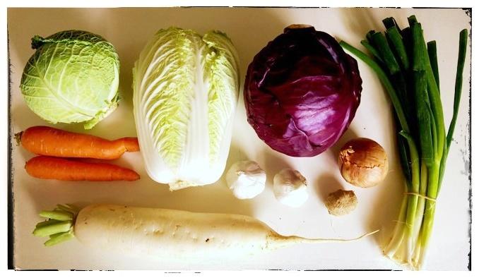 kimchi-selber-machen-rezept-zutaten